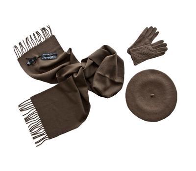 Комплект женский (берет, шарф, перчатки) 00481 темно-бежевый