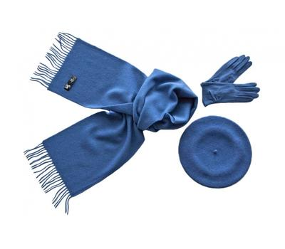 Комплект (берет, шарф, перчатки) 01261 синий