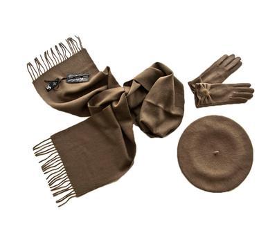 Комплект женский (берет, шарф, перчатки) 00421 темно-бежевый