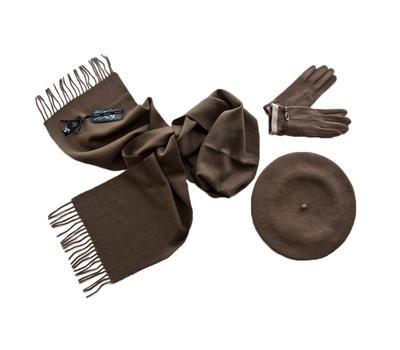 Комплект женский (берет, шарф, перчатки) 00511 темно-бежевый