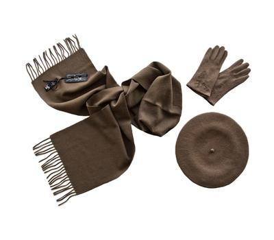 Комплект женский (берет, шарф, перчатки) 00541 темно-бежевый