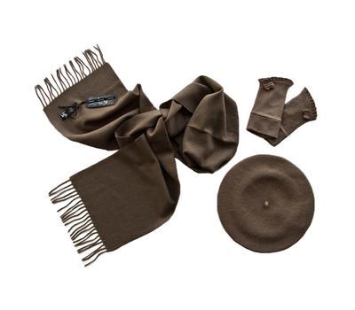 Комплект женский (берет, шарф, перчатки) 00601 темно-бежевый